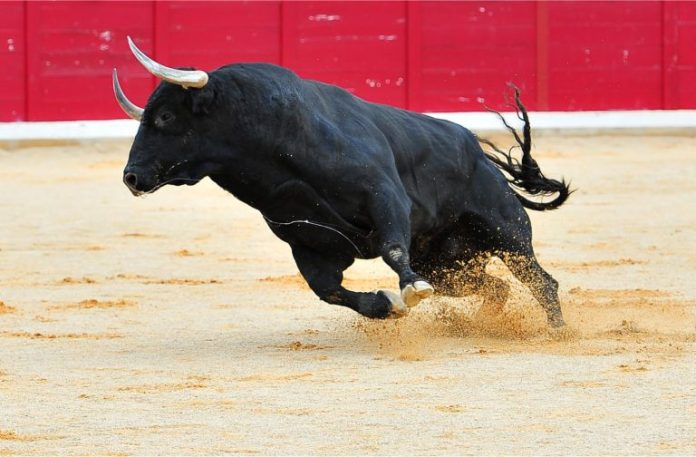 How the Recent Crypto Rally Compares With Previous Bull Runs