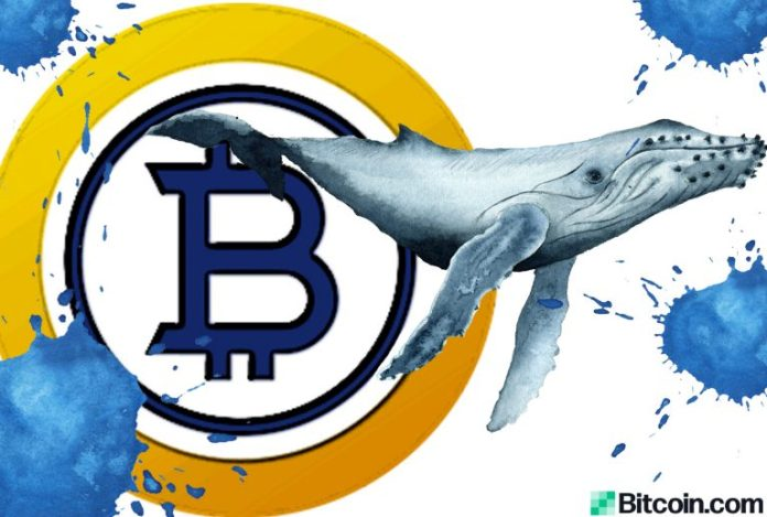 Study Claims BTG Whale Managed to Capture Close to Half the Bitcoin Gold Supply