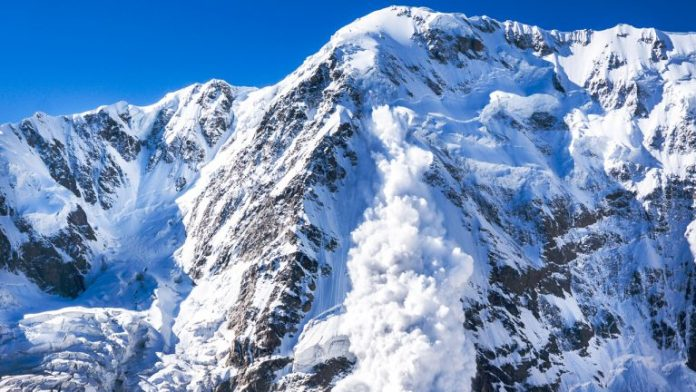 Avalanche Launch Fumbles: 'A Highly-Sophisticated DDoS Attack Derailed Token Sale'