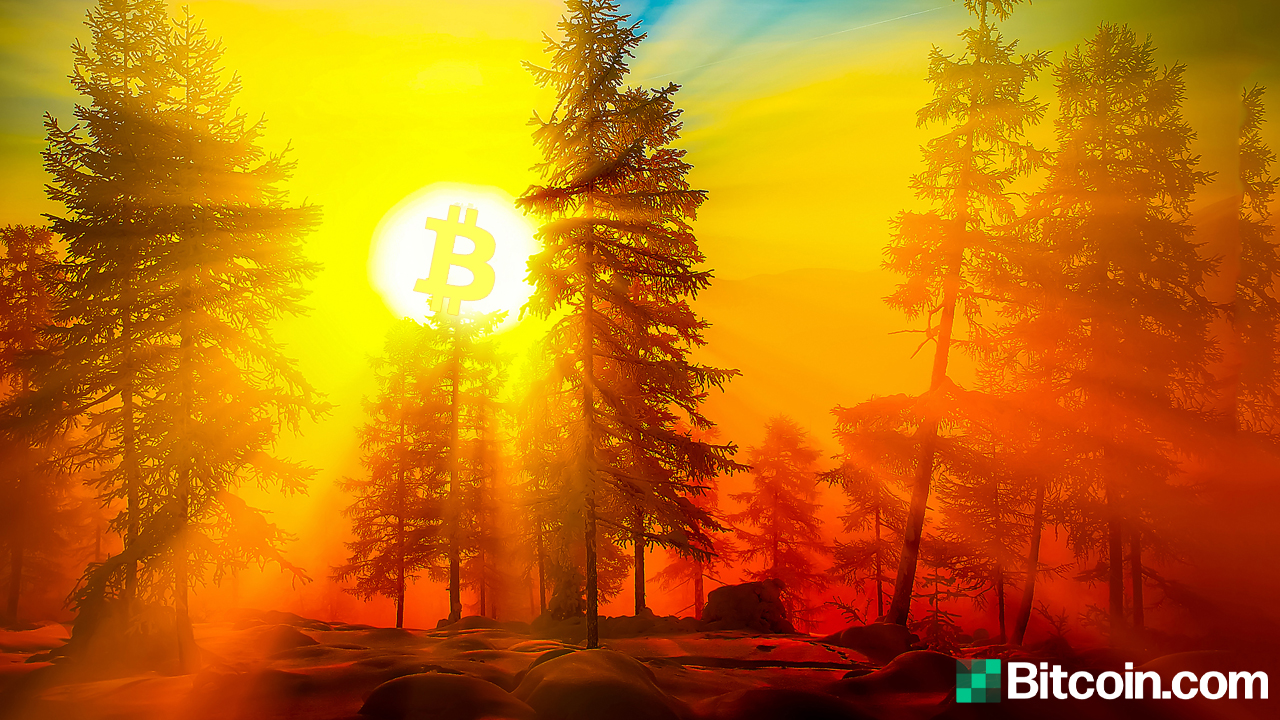 10-Year-Old Block Rewards Wake Up: Data Parsers Catch a String of 1,000 'Satoshi Era' Bitcoins from 2010 Spent Today