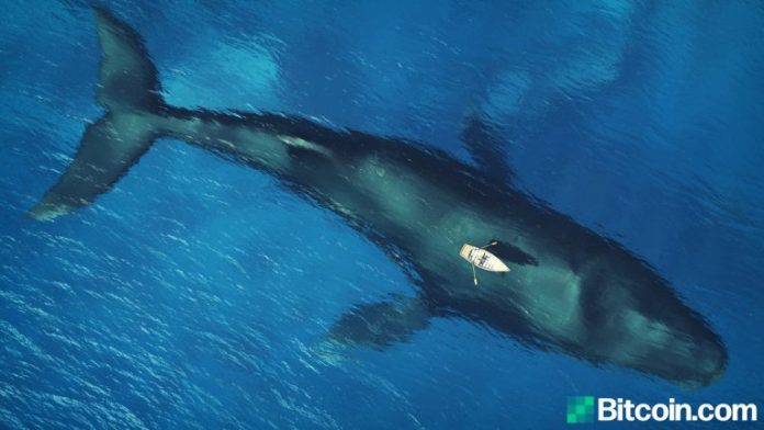Mystery Whale Moves 20 Bitcoin Block Rewards from 2010, Entity Moved 10,000 BTC Since Last Year