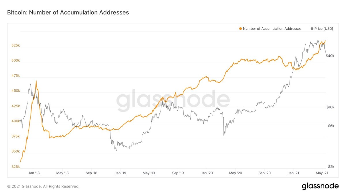 Data Shows Bitcoin Addresses in Accumulation Captures Fresh New Highs