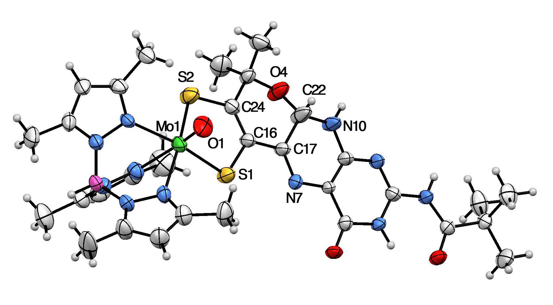 Bryn Mawr Chemists Synthesis Of Key Molecule Highlighted