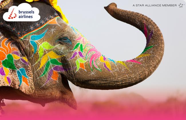 Mumbai Elephant