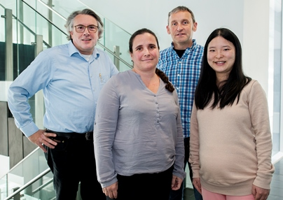 AML cancer research team