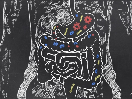 Researchers are now exploring how your unique gut bacteria determine your cancer risk