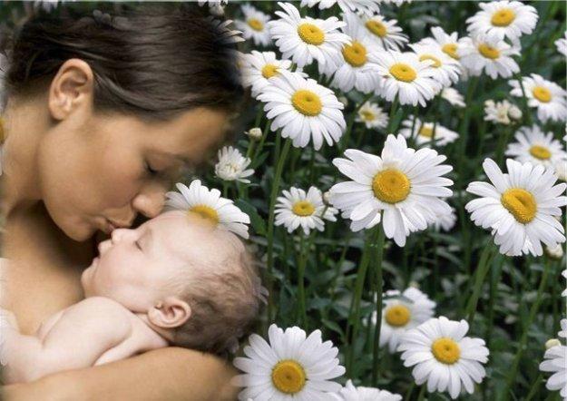 День матері. Вітання