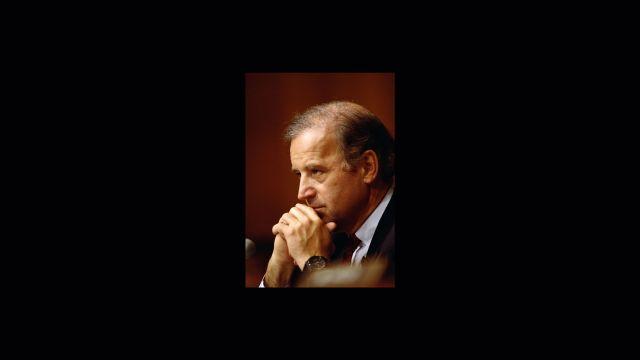 Joe Biden, 1993