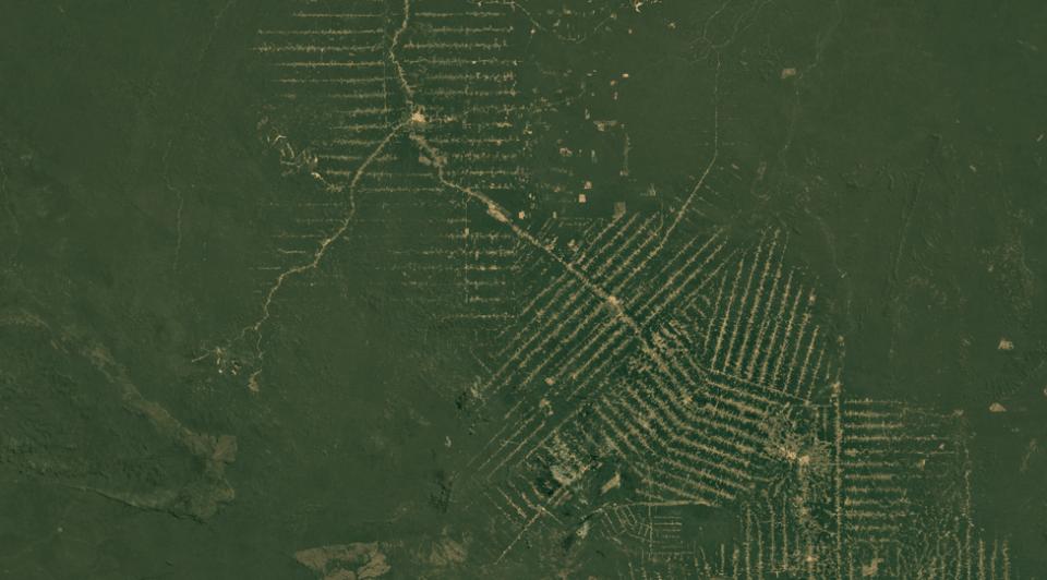 Спутниковые снимки Рондонии, Бразилия, 1984