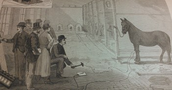 A clipping from the Daily News shows a drawing of Thomas Edison about to electrocute a horse.
