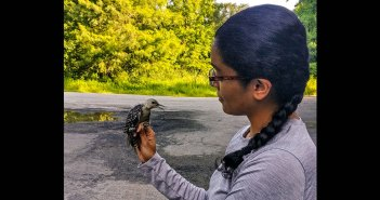Medha Pandey holds a red-bellied woodpecker