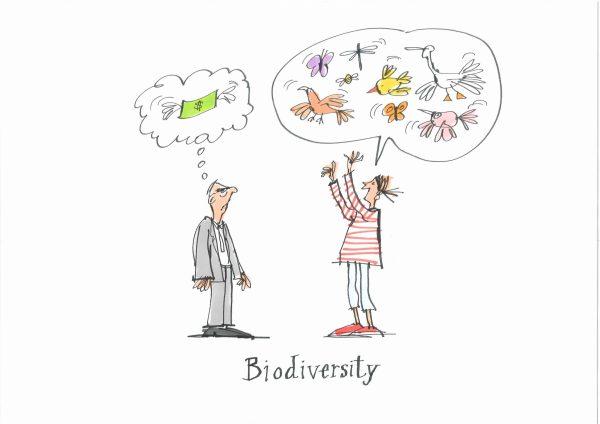 Biodiversity illustration, Geert Gratama