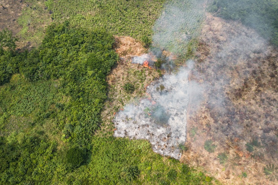 Burning fields near Yangambi, Democratic Republic of Congo, in 2018. Axel Fassio, CIFOR