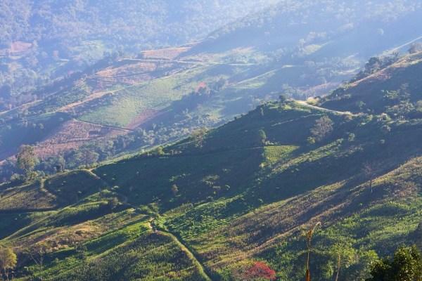 Chiang Rai landscape