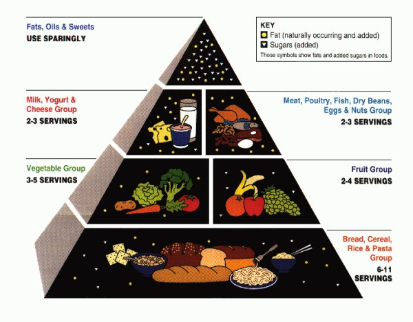 The USDA food pyramid published in 1992. Kelly Garbato, Flickr