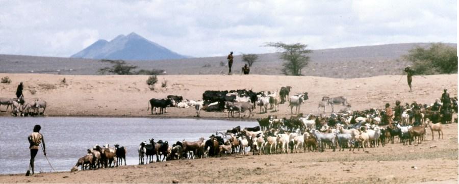 Herdsmen at a watering hole near Lake Turkana in Northern Kenya. Robin Hutton, Flickr