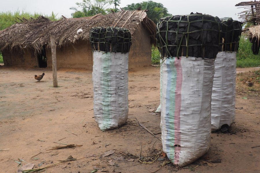 Charcoal bags of 40 kilograms can be sold in the city for up to USD 15. Ahtziri Gonzalez, CIFOR