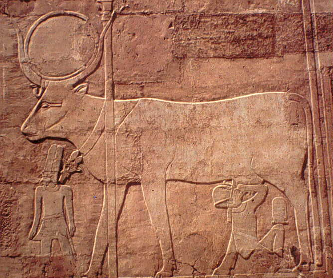 An ancient Egyptian cow relief in Egypt. Elsworth, ILRI
