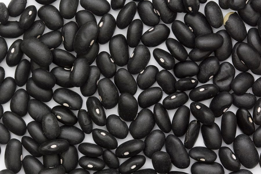 Black turtle beans. Sanjay Acharya, Wikimedia Commons