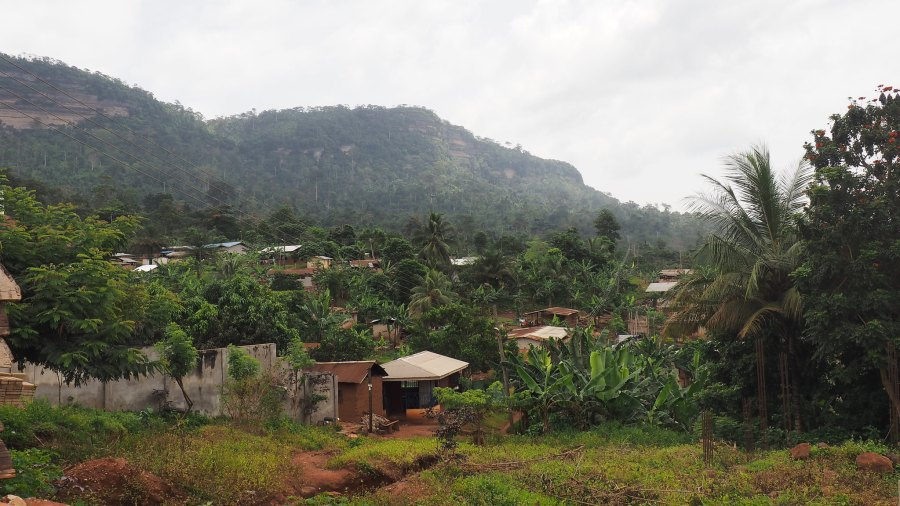 The Atewa Forest provides water for more than 5 million Ghanaians. Ahtziri Gonzalez, CIFOR