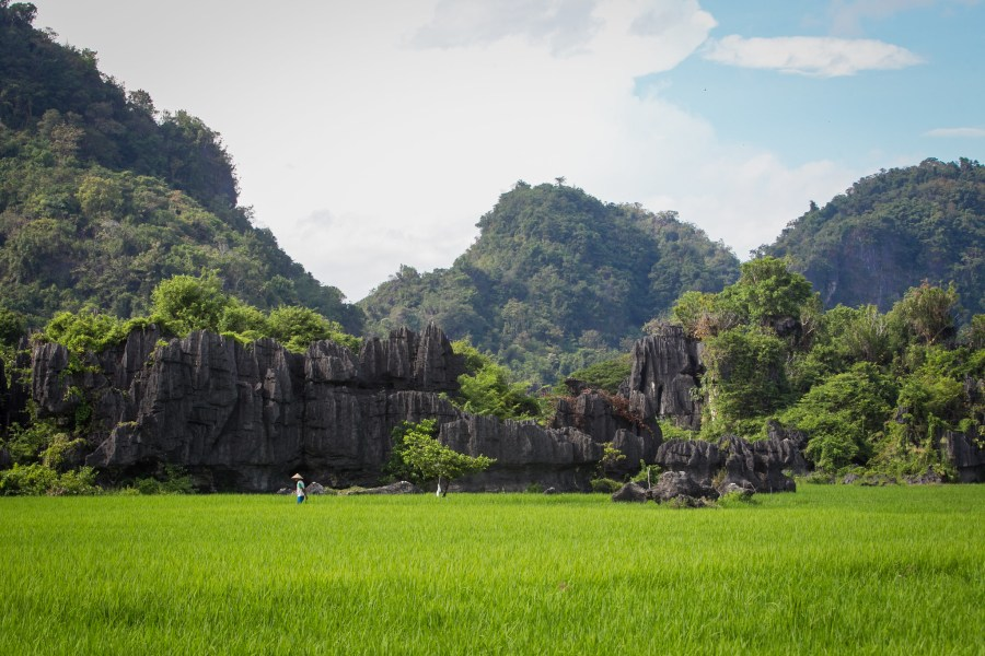 Karst formations in South Sulawesi, an Indonesian province due directly west of Maluku. Tri Saputro, CIFOR