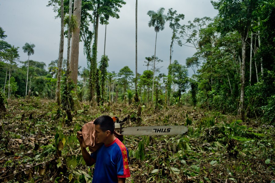 A Kichwa villager walks in the jungle carrying his chainsaw in front of an area he recently cleared for farming near the Napo River in Ecuador. Tomas Munita, CIFOR