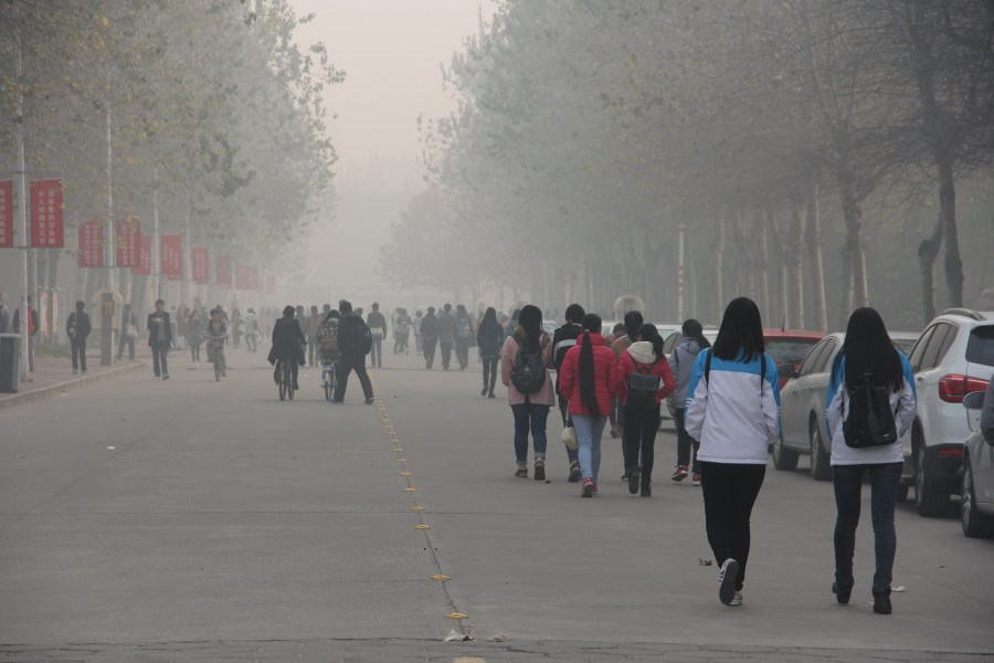 The World Health Organization recommends keeping pollution levels below 10 micrograms; China's standard is 35. Global Panorama