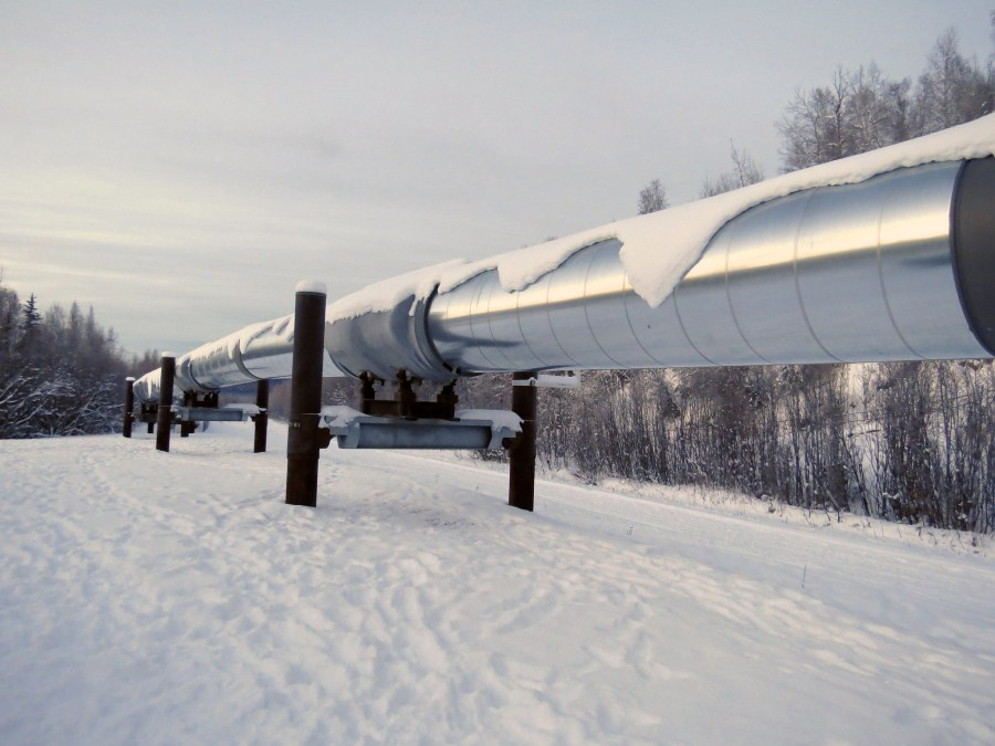 A portion of the Trans-Alaska Pipeline System. Under the Trump administration, oil drilling will expand into wildlife territories in the state. Malcolm Manners, Flickr
