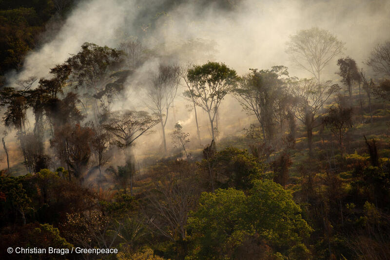 Forest fire in Mato Grosso state, Brazil in July 2020. Christian Graga, Greenpeace