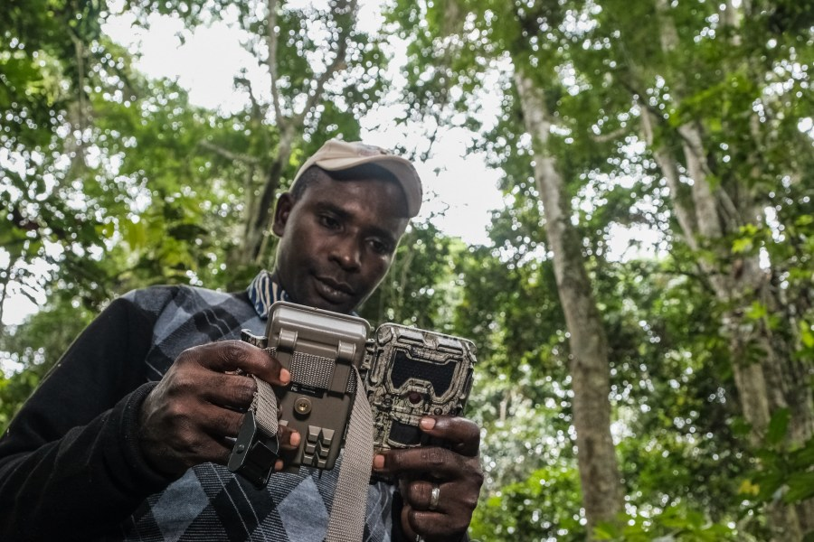 Jonas Muhindo, chercheur au CIFOR, règle un piège photographique. Axel Fassio, CIFOR