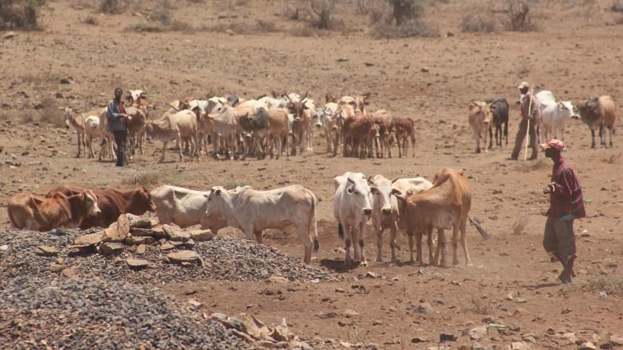 Pastoralists in rural Kenya. Kandukuru Nagarjun, Flickr
