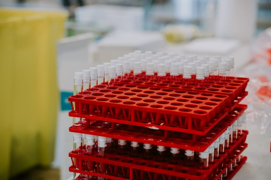 Vaccines supplied through the COVAX program will be crucial for low-income countries, particularly in Africa. Mat Napo, Unsplash