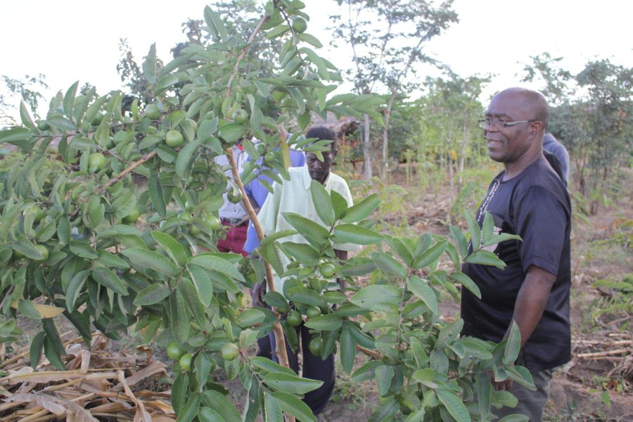 GLFx chapter coordinator Steve Makungwa helps train local communities on landscape sustainability in Malawi. Courtesy of Steve Makungwa