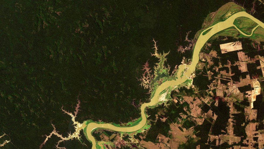 The Madeira River in Rondônia. The shapes in the bottom right are mostly cattle ranches. Oton Barros, DSR/OBT/INPE