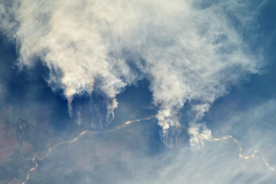 Desmonte de bosques mediante tala y quema a lo largo del río Xingu, en el estado de Matto Grosso, Brasil, 2011.Earth Observatory de la NASA