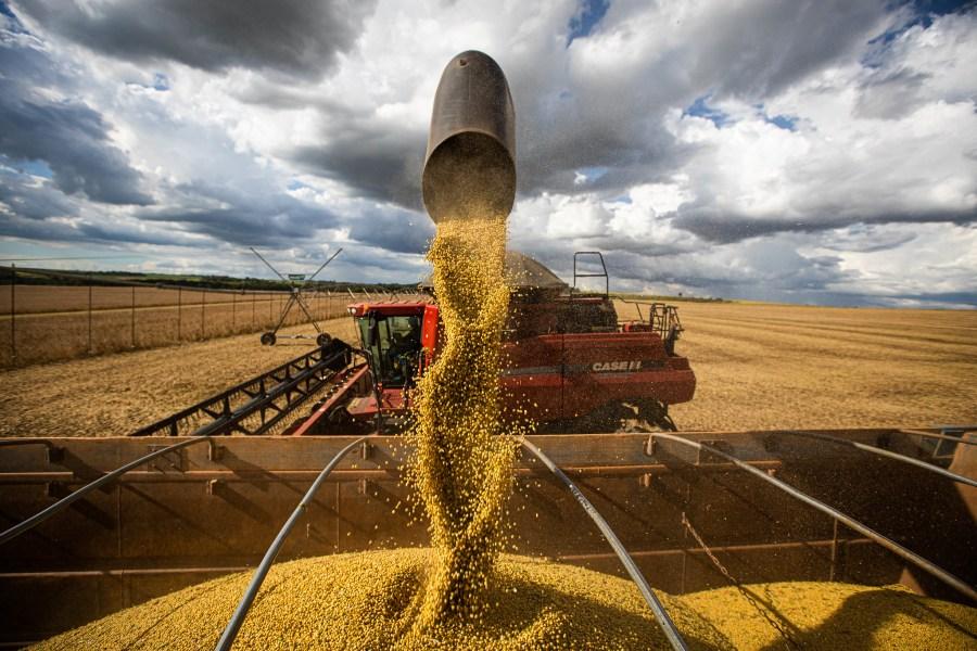 Colheita de soja no Brasil Central. Wenderson Araujo, Trilux