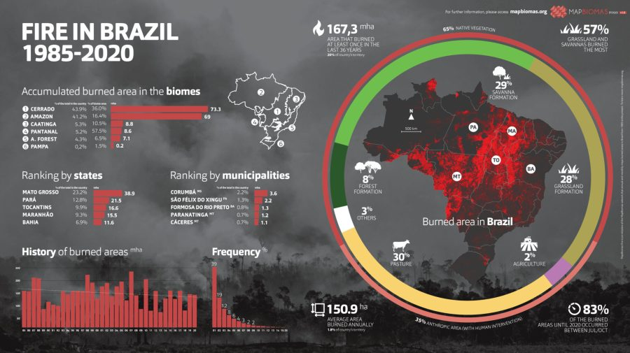 MapBiomas's infographic showing the results of their mapping of Brazilian fires over 16 years. Courtesy of MapBiomas