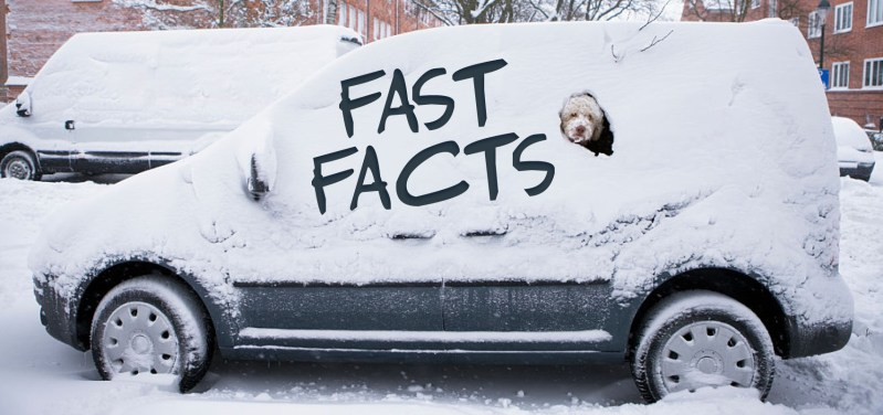 Winter Tire Fast Facts