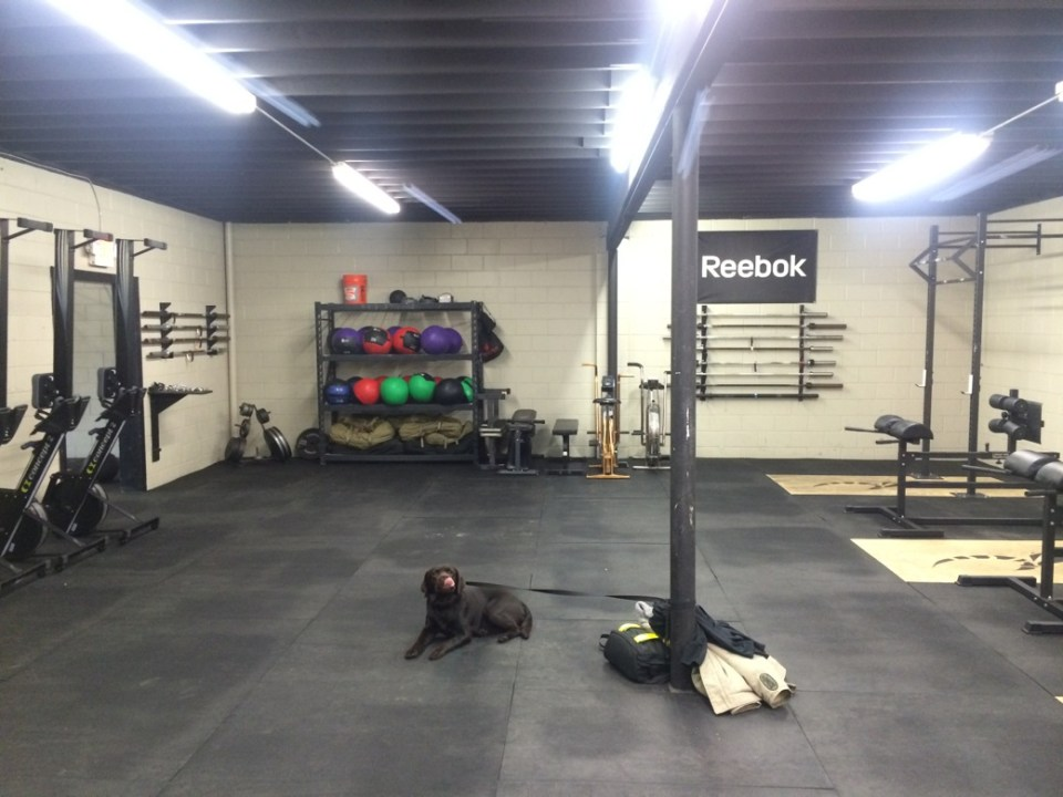 Monster_Black Hive_Training starts today