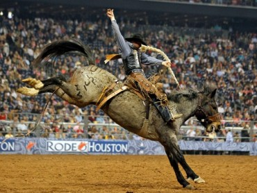 Rodeo-Houston-cowboy-riding-a-bucking-horse_0802591