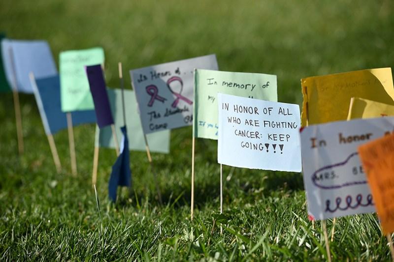 Harker Cancer Walk raises awareness and more than $6,300 for Camp Okizu