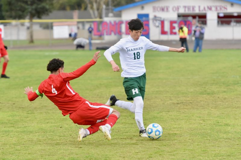 Boys soccer ends historic season; all spring teams in action