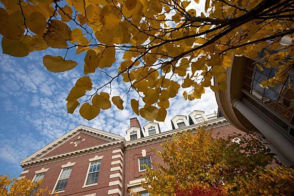 The results of the retirement program are detailed in the Office of Faculty Development and Diversity's (FD&D) 2010 Annual Report, which highlights many of FD&D's programmatic initiatives and presents up-to-date data on the composition of Harvard's ladder faculty.