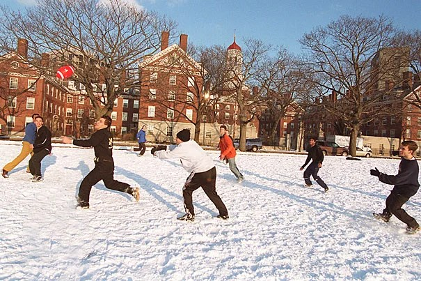 Students looking for something to do during Winter Break will find plenty of exciting activities offered by Harvard and its alumni, on and off campus.