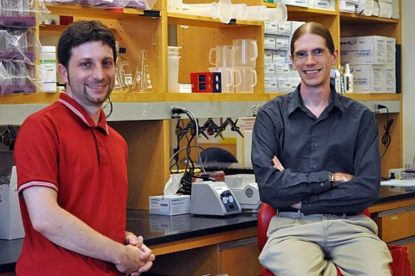 "Curtis Huttenhower (right) and Nicola Segata are two of the Harvard researchers who have helped to identify and analyze the vast human ""microbiome,"" the more than 5 million microbial genes in the body."