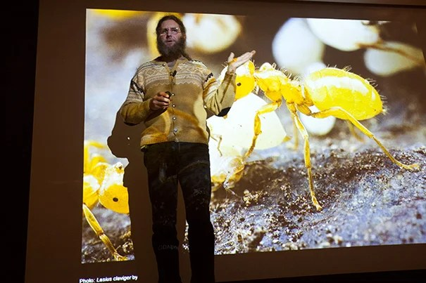 """A senior research fellow in ecology at Harvard Forest, Aaron Ellison discussed his new book, """"A Field Guide to the Ants of New England,"""" to an enthusiastic crowd that included members of the Harvard community and local fans of ecology."""