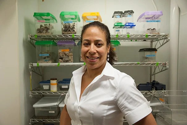"Associate Professor of Organismic and Evolutionary Biology Cassandra Extavour heads up the Evo-Devo-Eco Network (EDEN), a collaborative group of researchers devoted to encouraging the study of nontraditional ""model"" organisms."