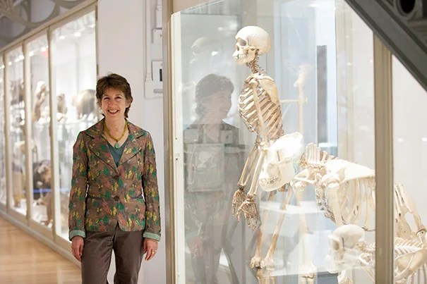 "Marlene Zuk: ""There is no 'progress' in evolution. No living thing is trying to get anywhere. And humans are not at the pinnacle of the evolutionary ladder."""