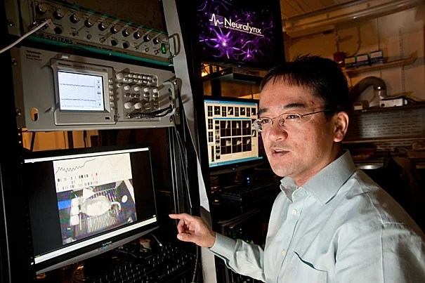 """A research team led by Naoshige Uchida, associate professor of molecular and cellular biology, found that rats averaged how much benefit they received over as many as five trials. When their brains were impaired in one region, however, the rats based their actions solely on the prior trial. """"This is a new framework to think about decision-making,"""" Uchida said."""