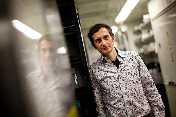 """""""We have been interested in this question for 20 years,"""" Alexander Schier, the Leo Erikson Life Sciences Professor of Molecular and Cellular Biology and senior author of the study, said of discovering the new signal. """"We've made a great deal of progress in understanding how these cells are made, but we could never really explain why these cells suddenly start to move. This new signal is part of the answer."""""""